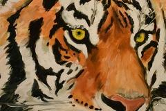 Tiger 2019